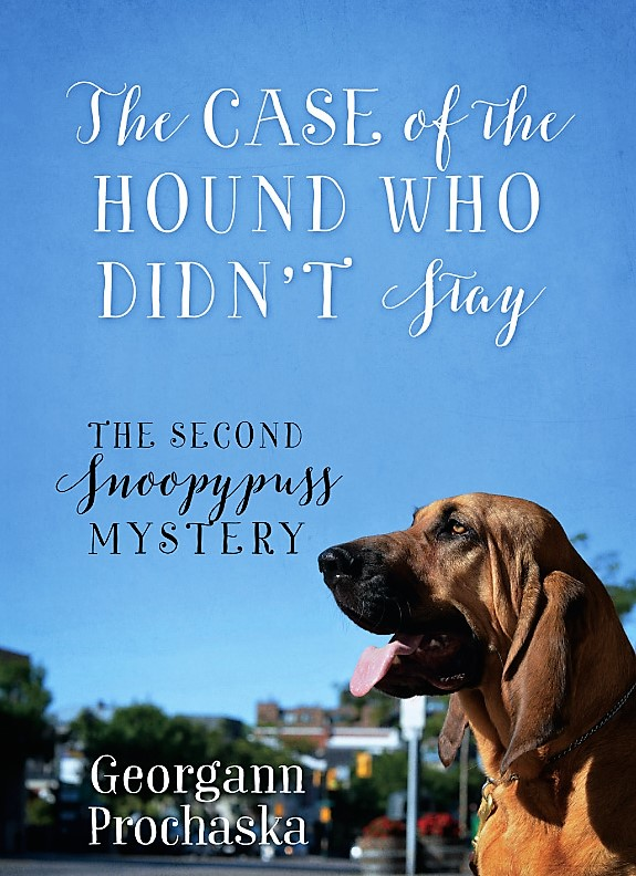 Cover hound who didn't stay